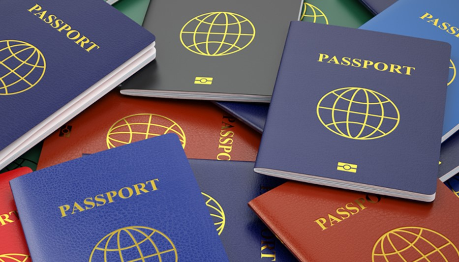 Overview of the Malta Citizenship by Investment Programme